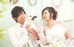wedding inu