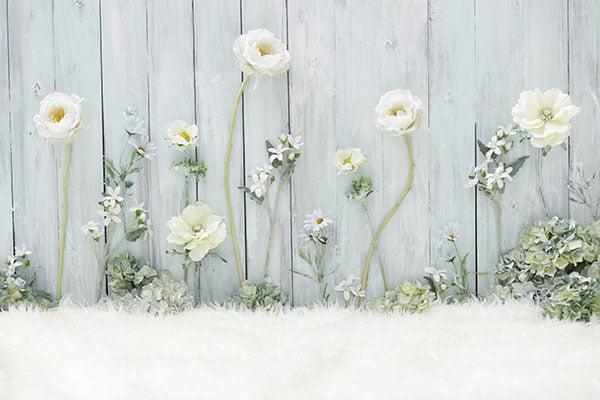 写真工房ぱれっと ファクトリー店 スタジオ背景 No.1 flower〜大人っぽいお花のエリアです。メルヘンな世界観で、妖精さんにみたいに。