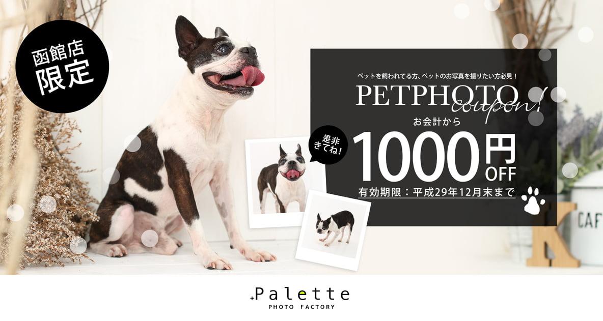 ペットフォトチケット_おもて-200