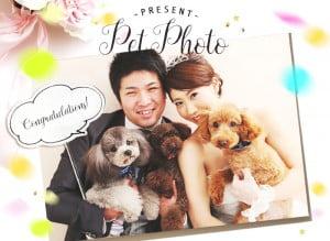 ペットと一緒に叶えるフォトウェディングはPalette札幌中央店で♪