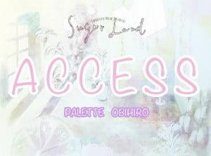 帯広access