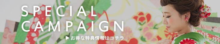 campain-banner_seijin