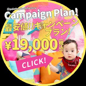 bnr_campaign_plan