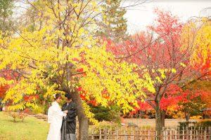 新スタジオお客様Report Part.38!幸運の持ち主のおふたり!!中島公園 紅葉撮影の様子をお届け…