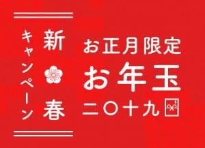 1/4〜1/6限定Palette札幌中央店からのお年玉!★★2019新春キャンペーン★★