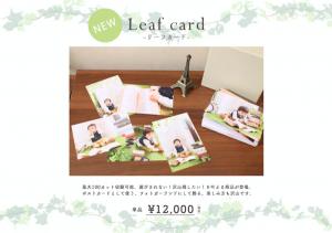 【☆新商品☆リーフカード】最大100枚プリント!たくさん写真を残したい方へオススメ!函館北斗店