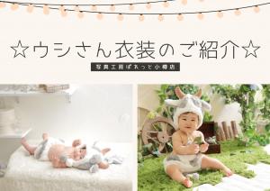 【新作衣装】小樽店で新作のウシの衣装でご撮影いただいたお客様をご紹介!